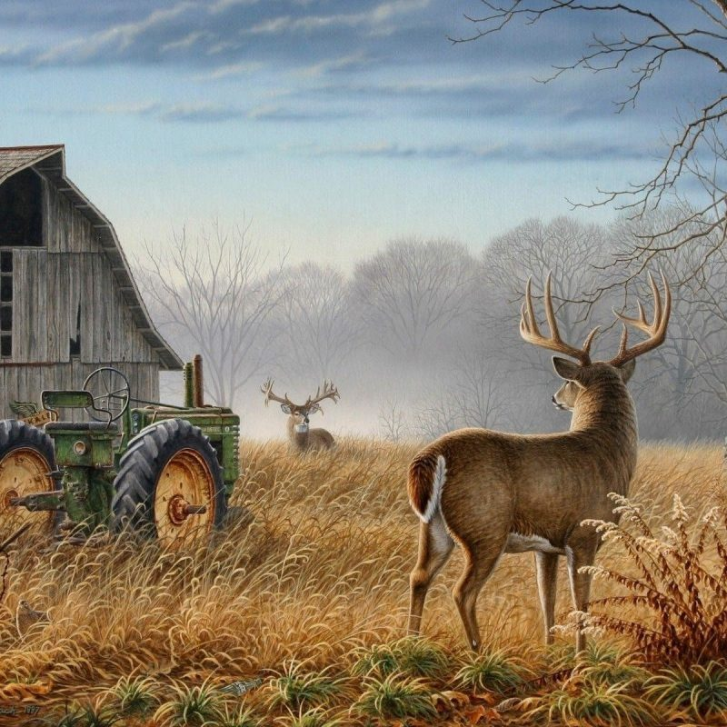 10 New Deer Hunting Desktop Wallpaper FULL HD 1920×1080 For PC Desktop 2018 free download deer hunting wallpaper for computer 57 images 800x800