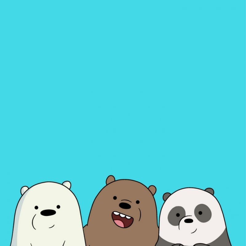 10 Latest We Bare Bears Iphone Wallpaper FULL HD 1080p For PC Desktop 2018 free download desenhos iphone wallpaper pinterest bare bears bears and 1 800x800