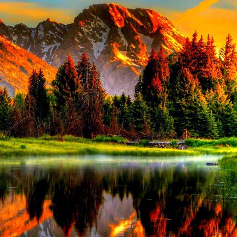 10 New Scenic Wallpaper For Desktop FULL HD 1080p For PC Desktop 2018 free download desktop backgrounds scenery group 93 800x800