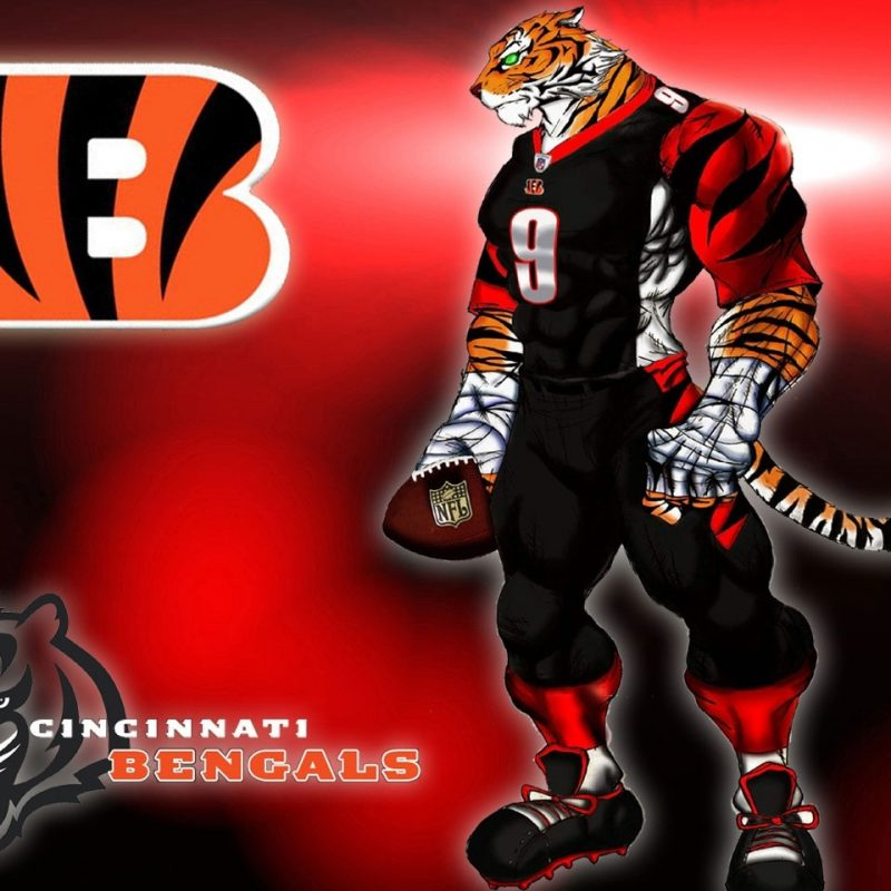 10 Most Popular Cincinnati Bengals Screen Savers FULL HD 1080p For PC Background 2018 free download desktop wallpaper 1 800x800