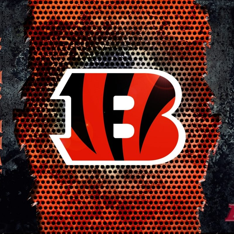 10 Most Popular Cincinnati Bengals Screen Savers FULL HD 1080p For PC Background 2018 free download desktop wallpaper cincinnati bengals 2 800x800