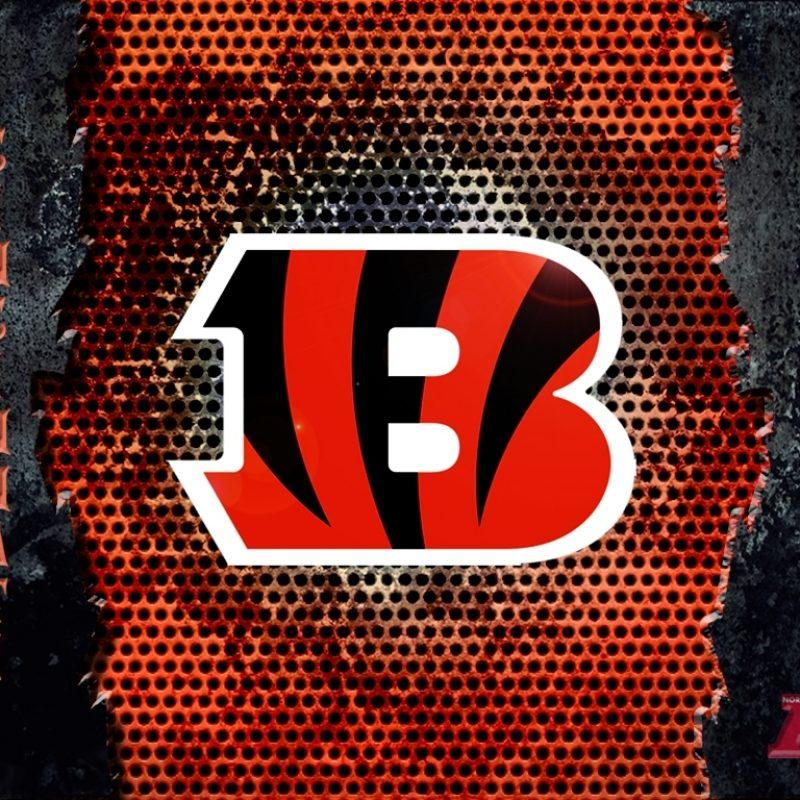 10 Most Popular Cincinnati Bengals Hd Wallpaper FULL HD 1080p For PC Background 2020 free download desktop wallpaper cincinnati bengals 800x800