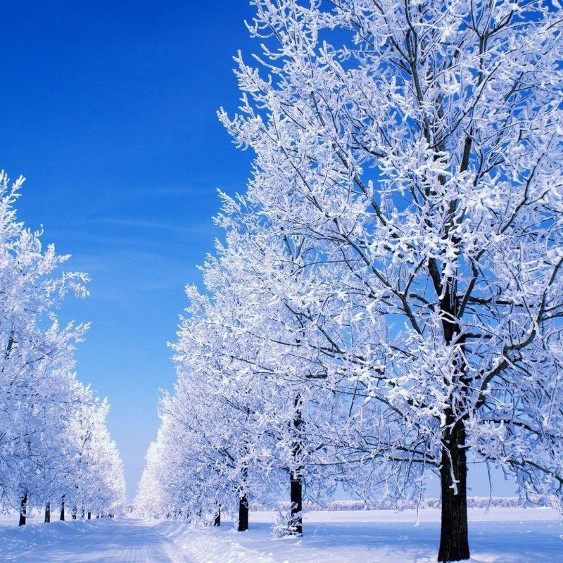 10 New Winter Scenes For Desktops FULL HD 1920×1080 For PC Desktop 2020 free download desktop wallpaper snow scenes 48 images 1 800x800