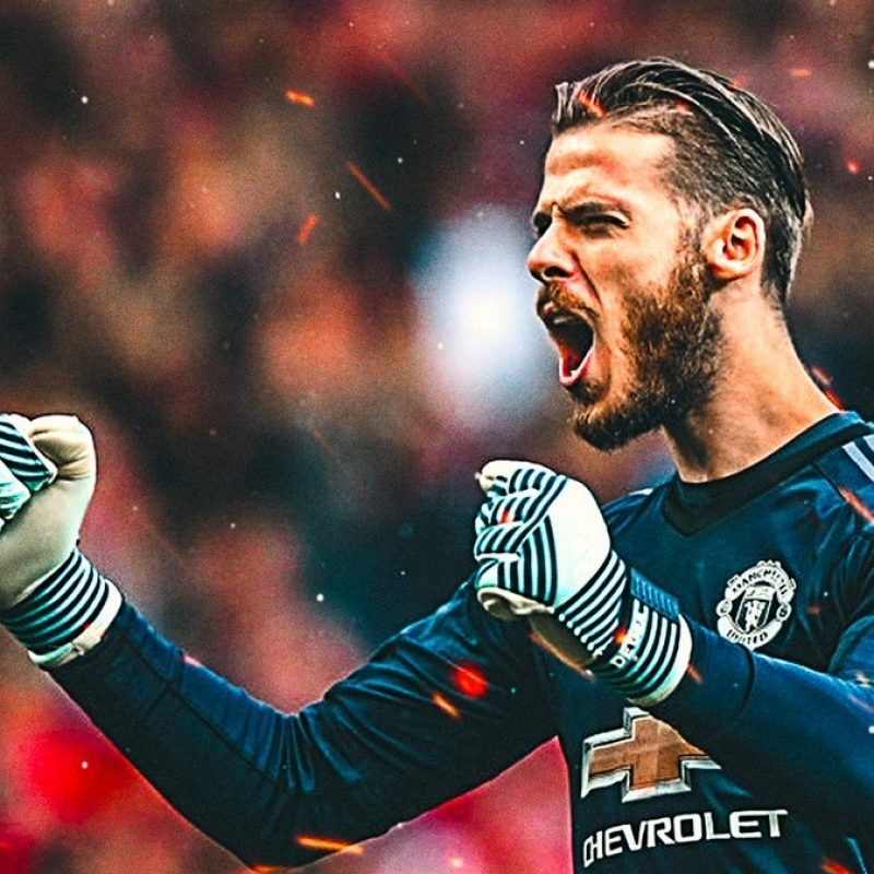 10 Top David De Gea Wallpapers FULL HD 1920×1080 For PC Background 2018 free download devils latest on twitter antonio valencia and david de gea 800x800