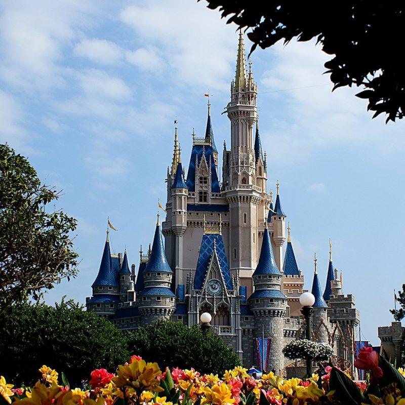 10 Latest Disney World Castle Wallpaper FULL HD 1080p For PC Background 2020 free download disney world castle wallpaper 1136803 800x800
