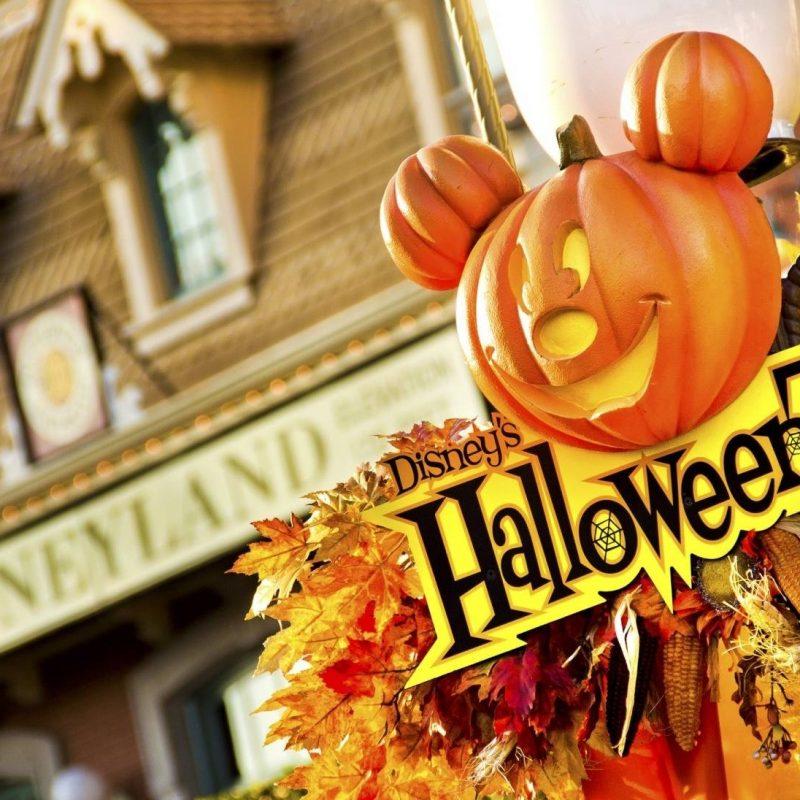 10 Top Disney World Halloween Desktop Background FULL HD 1080p For PC Background 2021 free download disney world desktop wallpaper 1 800x800