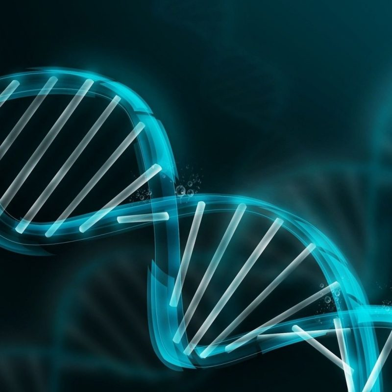 10 Best Dna Wallpaper High Resolution FULL HD 1920×1080 For PC Background 2018 free download dna wallpapers top hd dna wallpapers ng high resolution 1 800x800