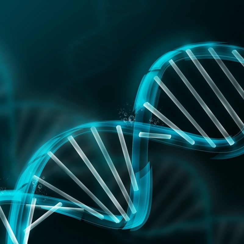 10 Best Dna Wallpaper High Resolution FULL HD 1920×1080 For PC Background 2018 free download dna wallpapers top hd dna wallpapers ng high resolution 800x800