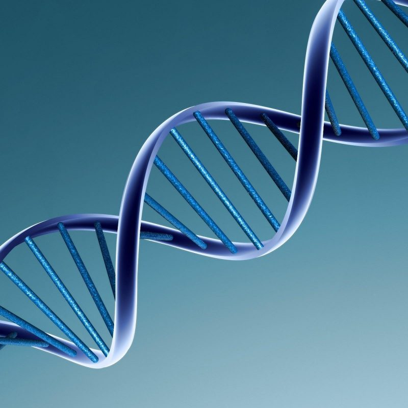 10 Best Dna Wallpaper High Resolution FULL HD 1920×1080 For PC Background 2018 free download dna wallpapers wallpaper cave 800x800