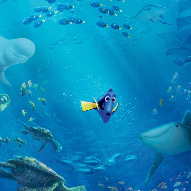 10 Latest Finding Nemo Ocean Background FULL HD 1920×1080 For PC Background 2018 free download dory from finding dory full hd fond decran and arriere plan 800x800