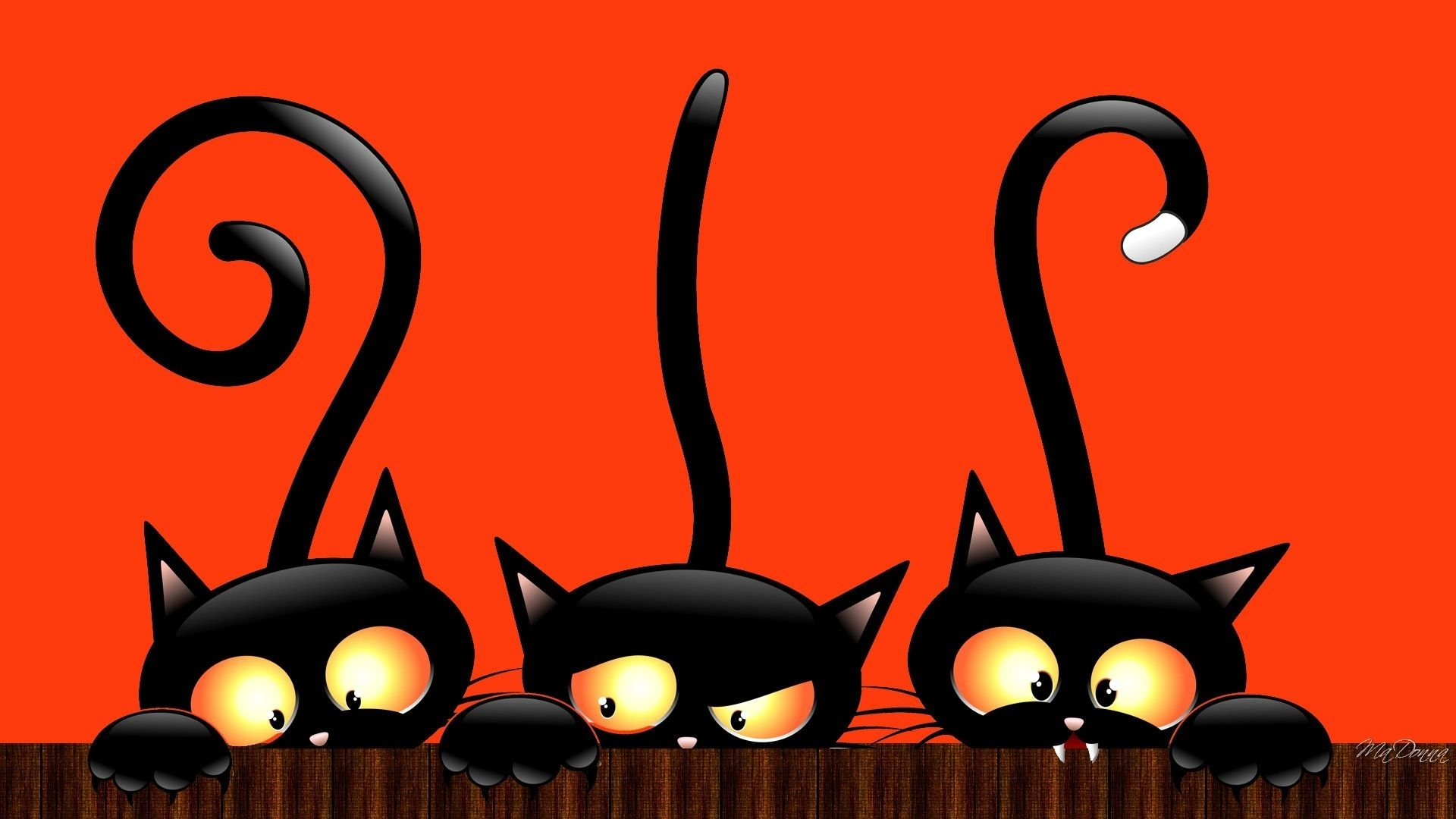 10 New Cute Cat Halloween Backgrounds FULL HD 1920x1080 For PC Desktop 2018 Free