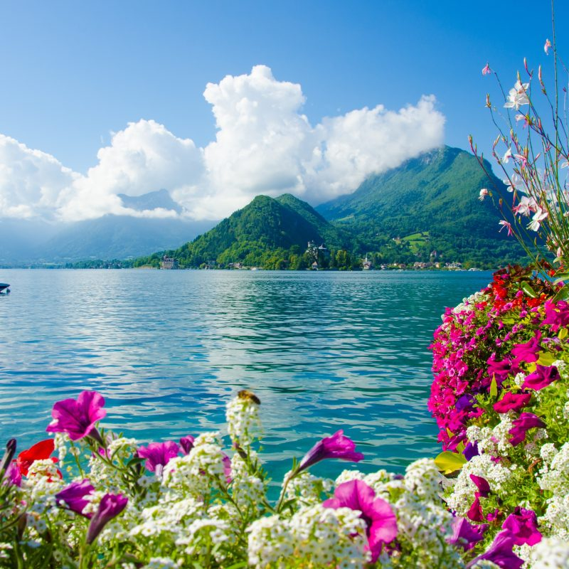 10 Top Beautiful Nature Background Hd FULL HD 1920×1080 For PC Background 2020 free download download beautiful nature wallpaper for desktop background hd images 1 800x800