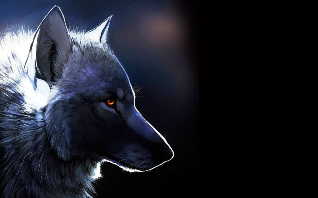 10 Top Cool Animal Wallpapers Wolf FULL HD 1920×1080 For PC Desktop 2018 free download download cool animal wallpapers avengerswallpapers 1280x1024 cool 1024x640