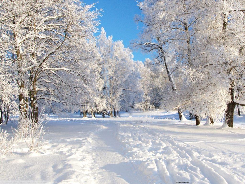 10 Most Popular Winter Free Wallpaper Background FULL HD 1920×1080 For PC Background 2018 free download download free high definition winter backgrounds media file 1024x768