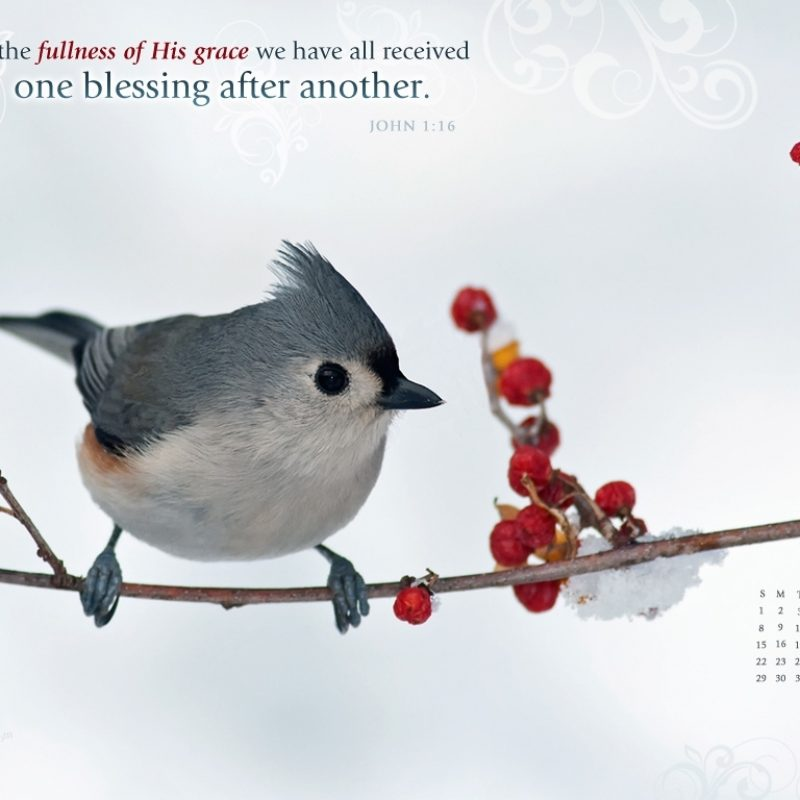 10 Best January 2017 Computer Wallpaper FULL HD 1920×1080 For PC Background 2018 free download download hd christmas new year 2018 bible verse greetings card 1 800x800