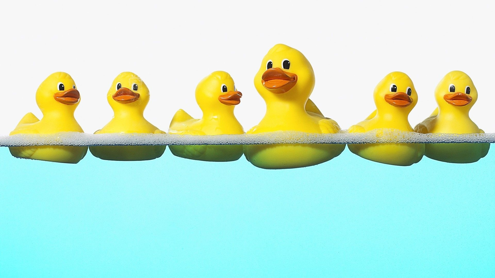 download rubber ducks wallpaper 1920x1080 | full hd wallpapers