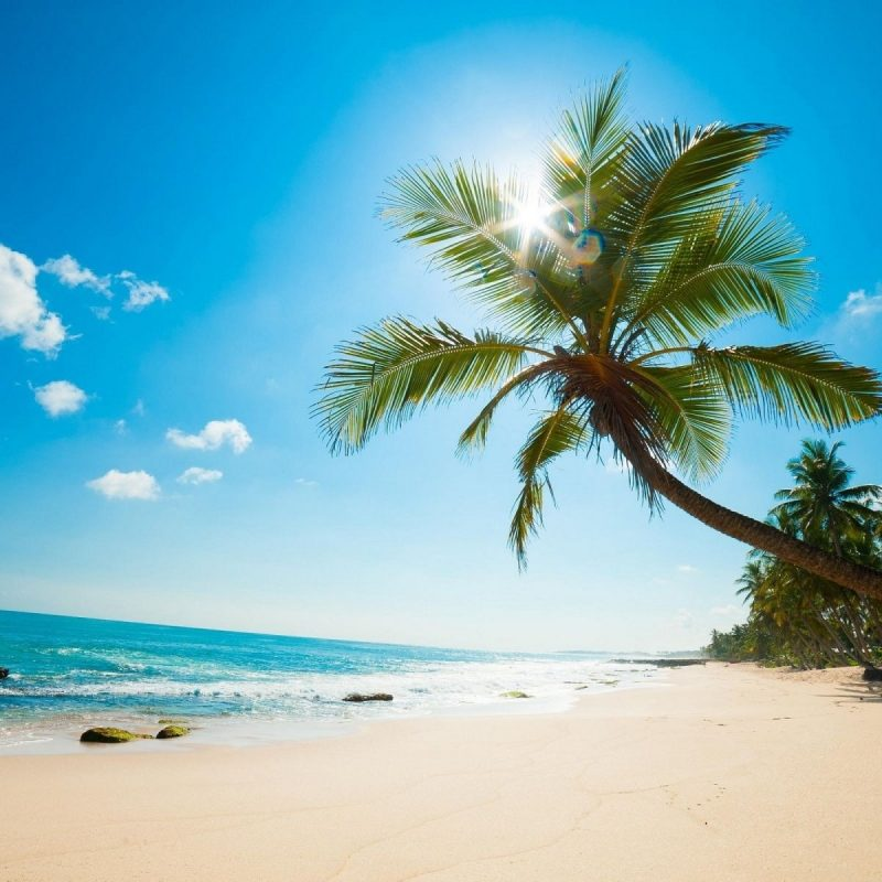 10 Top Caribbean Beaches Wallpaper Desktop FULL HD 1080p For PC Desktop 2020 free download download these high res caribbean wallpaper backgrounds here 800x800