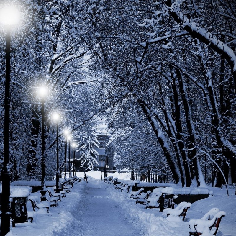10 Top Hd Snow Wallpapers 1080P FULL HD 1920×1080 For PC Background 2018 free download download wallpaper 1920x1080 park winter twilight lamps light 800x800