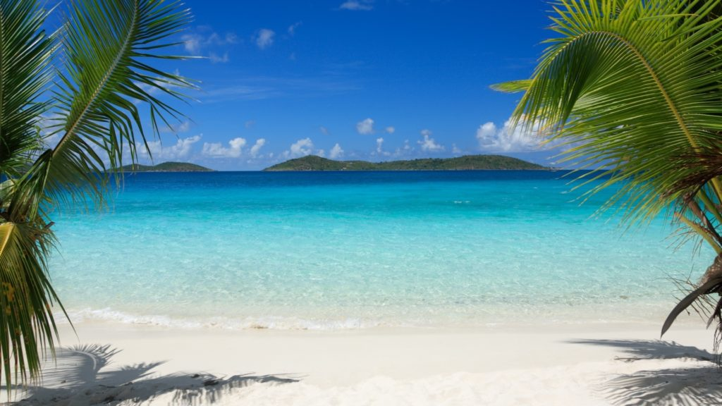 10 New Beach And Palm Trees Background FULL HD 1920×1080 For PC Background 2018 free download download wallpaper 1920x1080 tropics beach palm trees sand full 1024x576