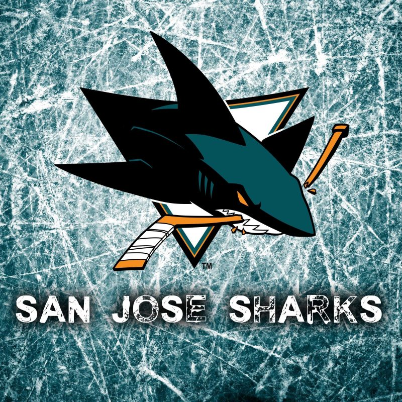 10 Top San Jose Sharks Backgrounds FULL HD 1080p For PC Desktop 2018 free download download wallpaper 3840x2400 national hockey league san jose sharks 800x800