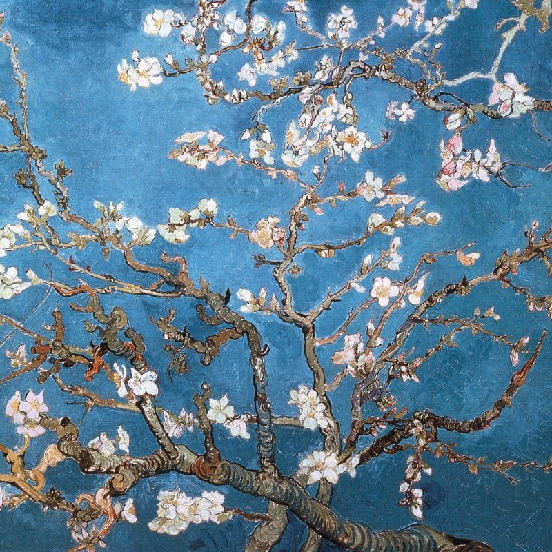10 New Van Gogh Almond Blossoms Wallpaper FULL HD 1920×1080 For PC Background 2020 free download download wallpapers download 2560x1600 blossoms vincent van gogh 800x800