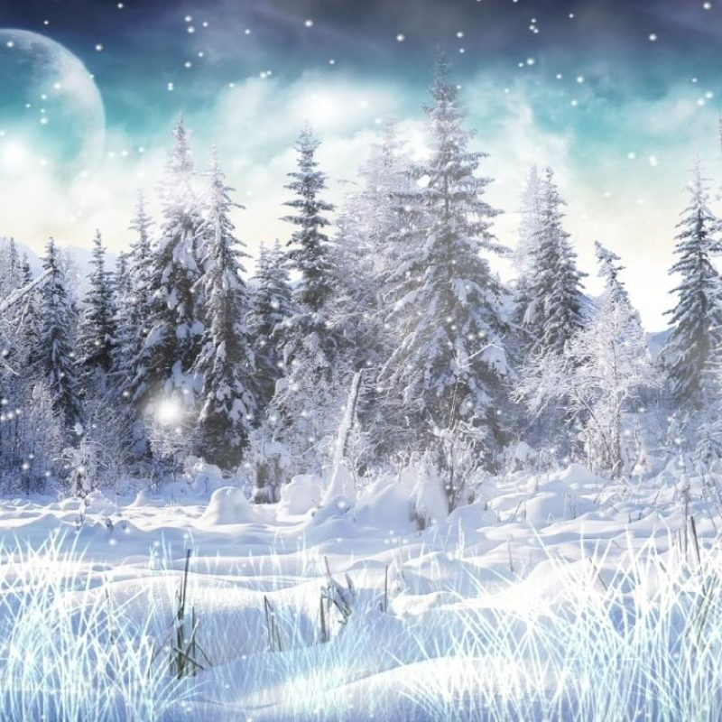 10 Best Winter Screensavers And Wallpaper FULL HD 1080p For PC Desktop 2018 free download download winter snow animated wallpaper 800x800