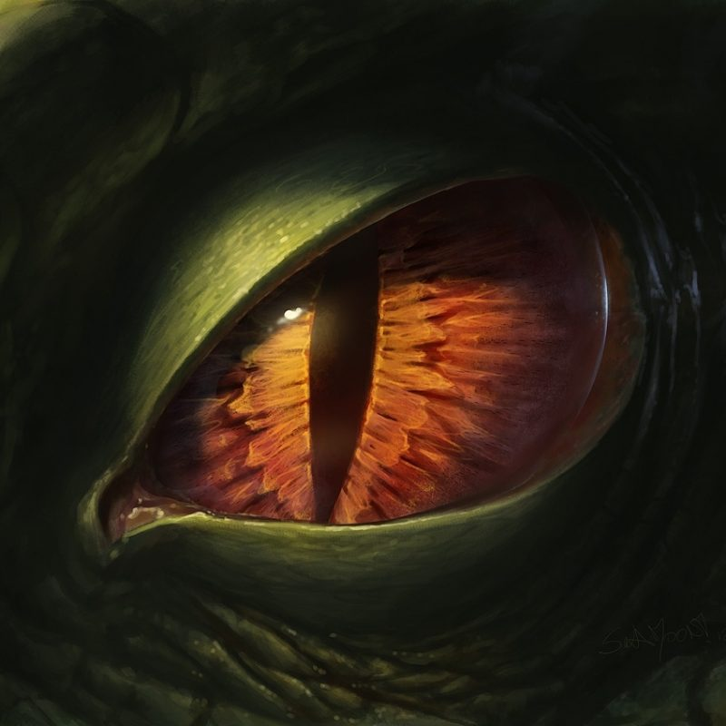 10 Latest Pictures Of Dragon Eyes FULL HD 1920×1080 For PC Background 2018 free download dragon eye 2012sulamoon on deviantart 800x800