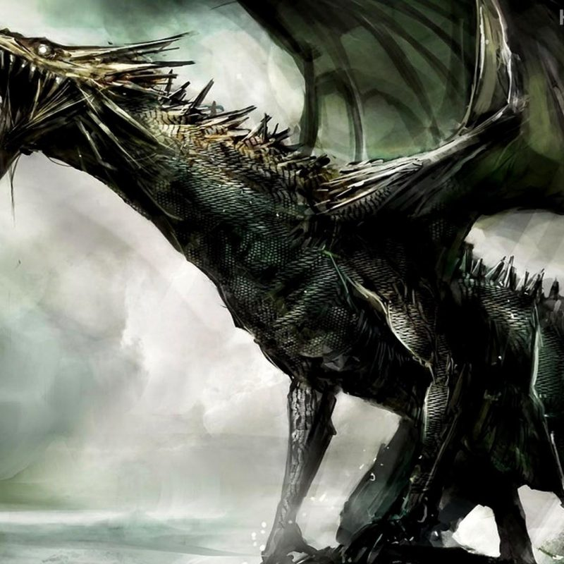 10 Most Popular Hd Dragon Wallpapers 1080P FULL HD 1920×1080 For PC Background 2018 free download dragon hd wallpapers wallpaper cave 1 800x800