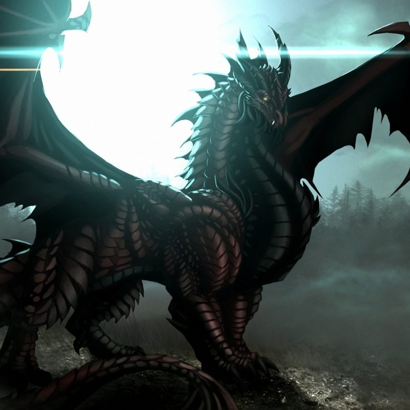 10 Most Popular Hd Dragon Wallpapers 1920X1080 FULL HD 1920×1080 For PC Desktop 2018 free download dragon wallpaper 37 the 50 best dragon wallpapers 800x800