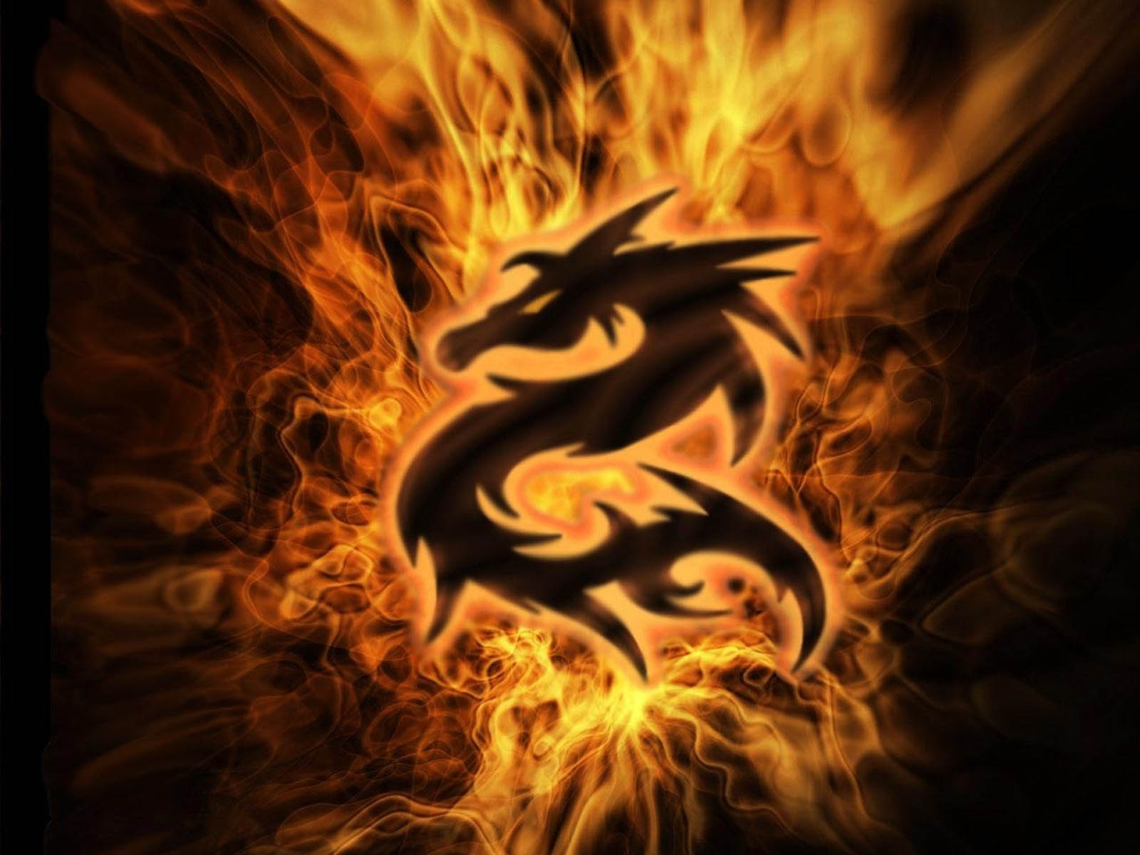 dragon wallpaper free download