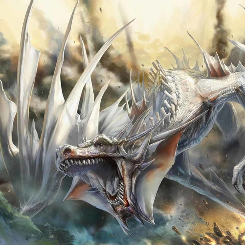 10 Most Popular Hd Dragon Wallpapers 1080P FULL HD 1920×1080 For PC Background 2018 free download dragon wallpaper hd 1080p 76 images 3 800x800