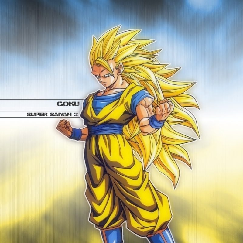 10 Top Super Saiyan 3 Goku Wallpaper FULL HD 1920×1080 For PC Desktop 2018 free download dragonball z movie characters images goku super saiyan 3 wallpaper 3 1 800x800