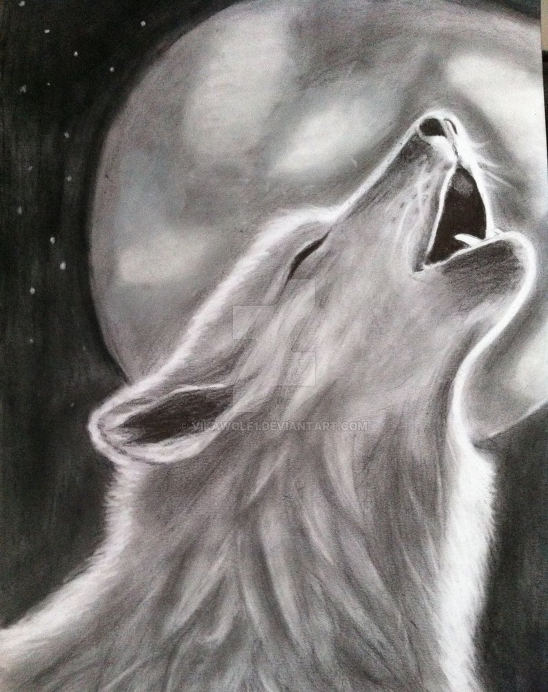 drawing of a wolf howling on the moonvikawolf1 on deviantart