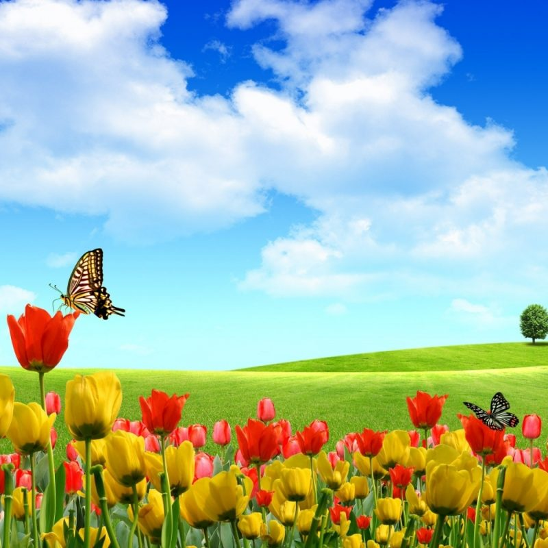 10 Best Spring Pictures For Desktop FULL HD 1920×1080 For PC Desktop 2018 free download dreamscape spring e29da4 4k hd desktop wallpaper for 4k ultra hd tv 800x800