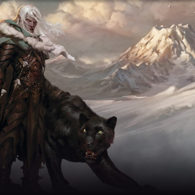 10 New Drizzt Do'urden Wallpaper Hd FULL HD 1920×1080 For PC Background 2018 free download drizzt do urden wallpaper 78 images 800x800