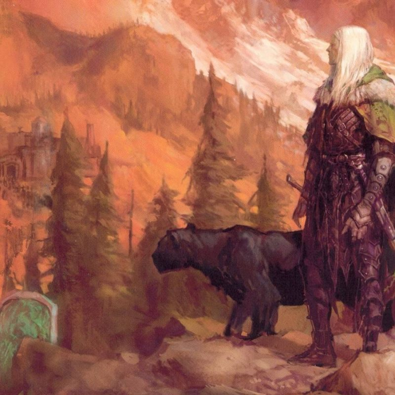 10 New Drizzt Do'urden Wallpaper Hd FULL HD 1920×1080 For PC Background 2018 free download drizzt wallpapers wallpaper cave 800x800