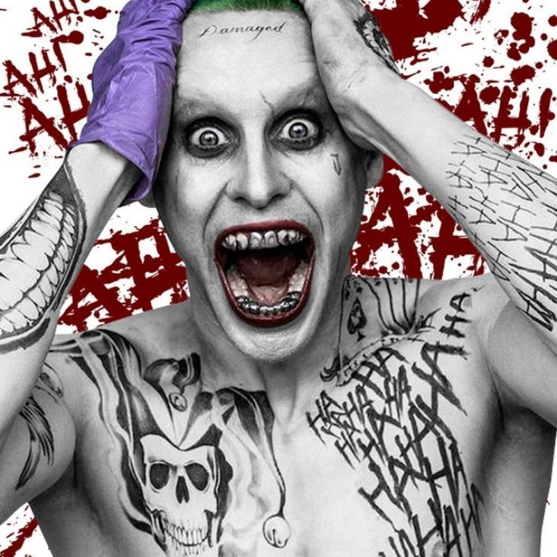 10 Latest Jared Leto Joker Wallpaper FULL HD 1080p For PC Desktop 2018 free download e0b89ce0b8a5e0b881e0b8b2e0b8a3e0b884e0b989e0b899e0b8abe0b8b2e0b8a3e0b8b9e0b89be0b8a0e0b8b2e0b89ee0b8aae0b8b3e0b8abe0b8a3e0b8b1e0b89a j 800x800