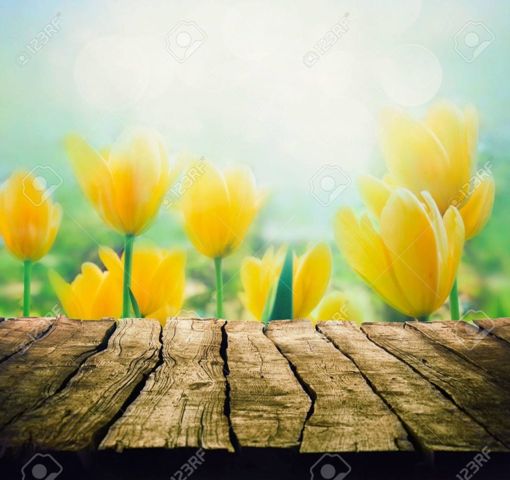 10 Most Popular Spring Flower Background Images FULL HD 1920×1080 For PC Background 2018 free download easter background with tabletop spring flowers background wood 1024x964
