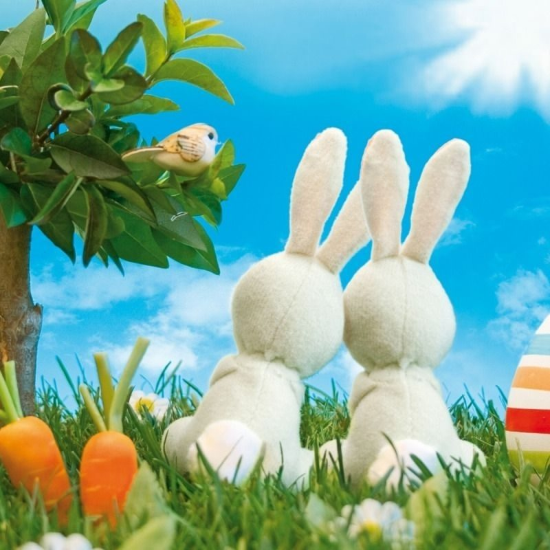 10 Most Popular Happy Easter Wallpaper Hd FULL HD 1920×1080 For PC Background 2020 free download easter screensavers screen savers pinterest easter and easter 800x800