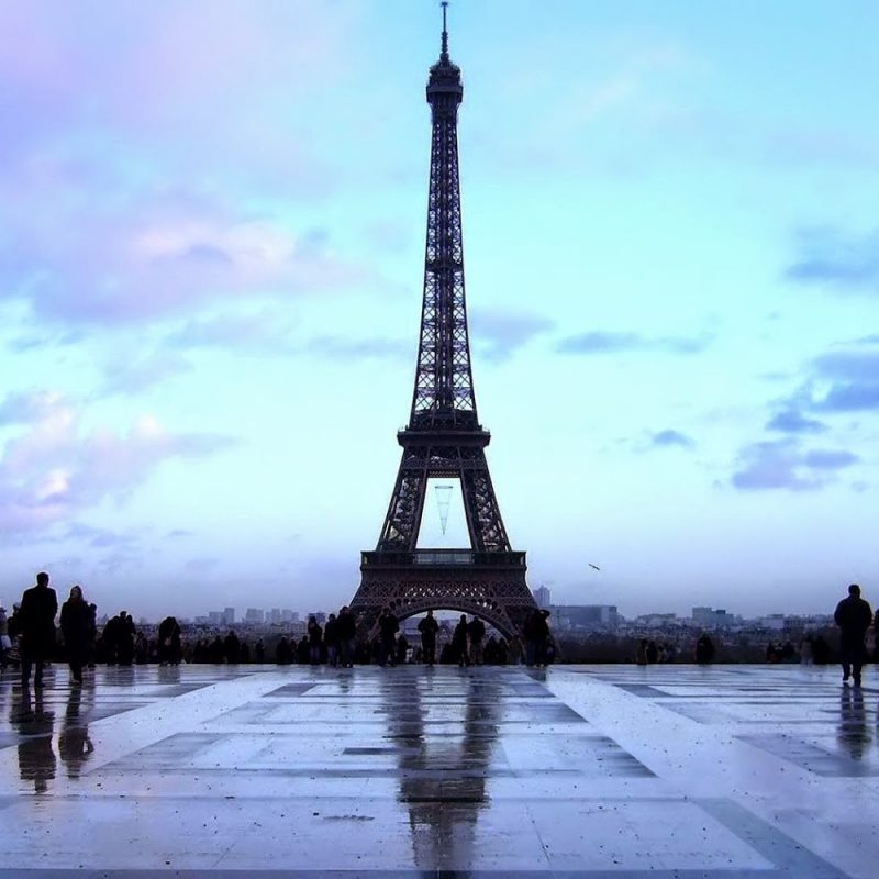 10 Best Eiffel Tower Desktop Wallpaper FULL HD 1080p For PC Background 2021 free download eiffel tower amazing evening wallpapers eiffel tower latest hd 800x800