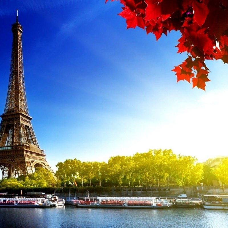 10 Best Eiffel Tower Desktop Wallpaper FULL HD 1080p For PC Background 2021 free download eiffel tower desktop wallpapers wallpaper cave 800x800