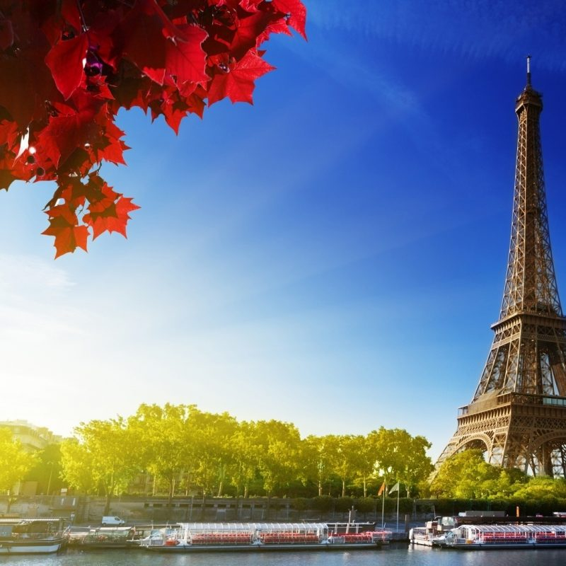 10 Best Eiffel Tower Desktop Wallpaper FULL HD 1080p For PC Background 2021 free download eiffel tower e29da4 4k hd desktop wallpaper for 4k ultra hd tv e280a2 wide 800x800