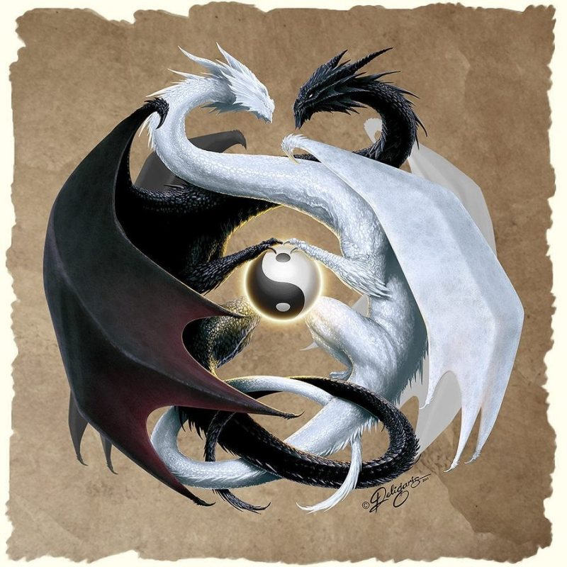 10 Top Yin And Yang Dragons FULL HD 1920×1080 For PC Background 2018 free download epingle par none of your business 3 sur dragons pinterest 800x800