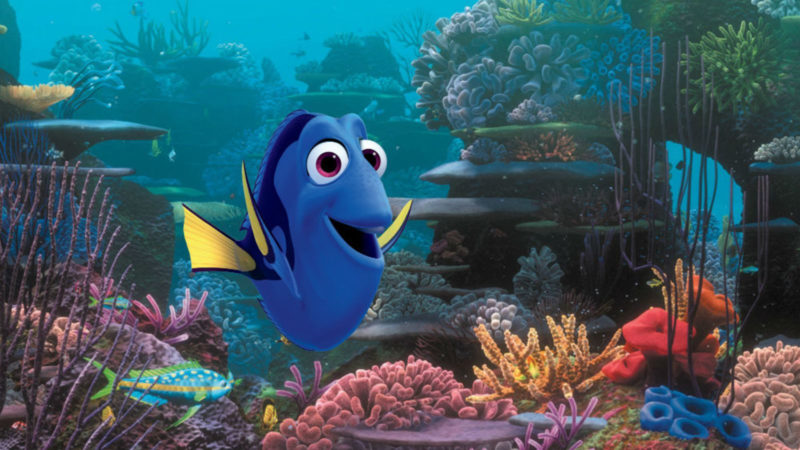 10 Best Finding Dory Ocean Background FULL HD 1920×1080 For PC Background 2018 free download everything you ever wanted to know about the making of finding dory 800x450