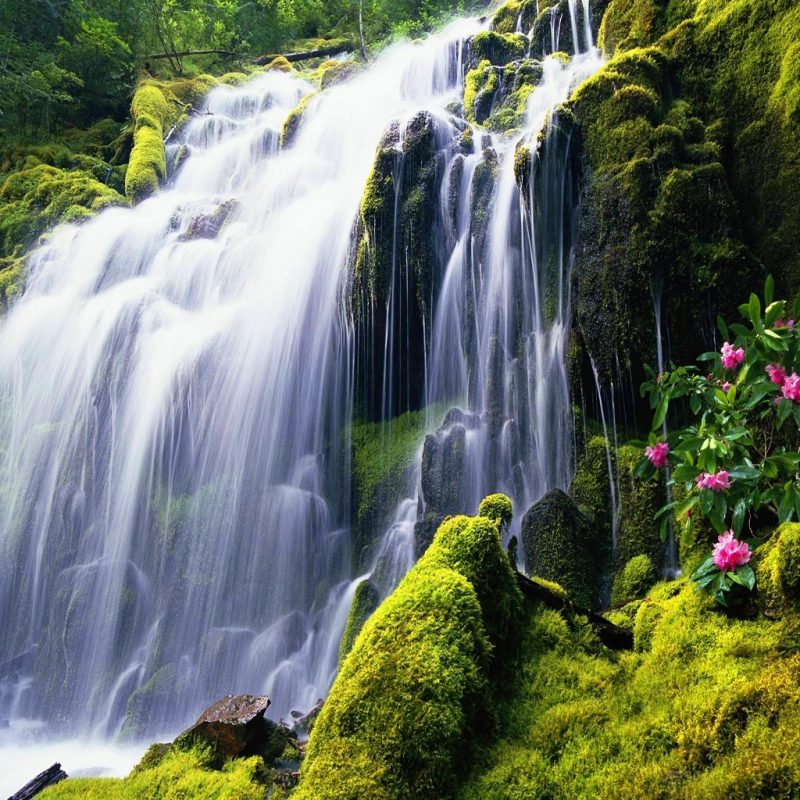 10 Most Popular Waterfalls Wallpaper Free Download FULL HD 1920×1080 For PC Background 2018 free download exotic destinations around the world picture 20132306 funny 800x800