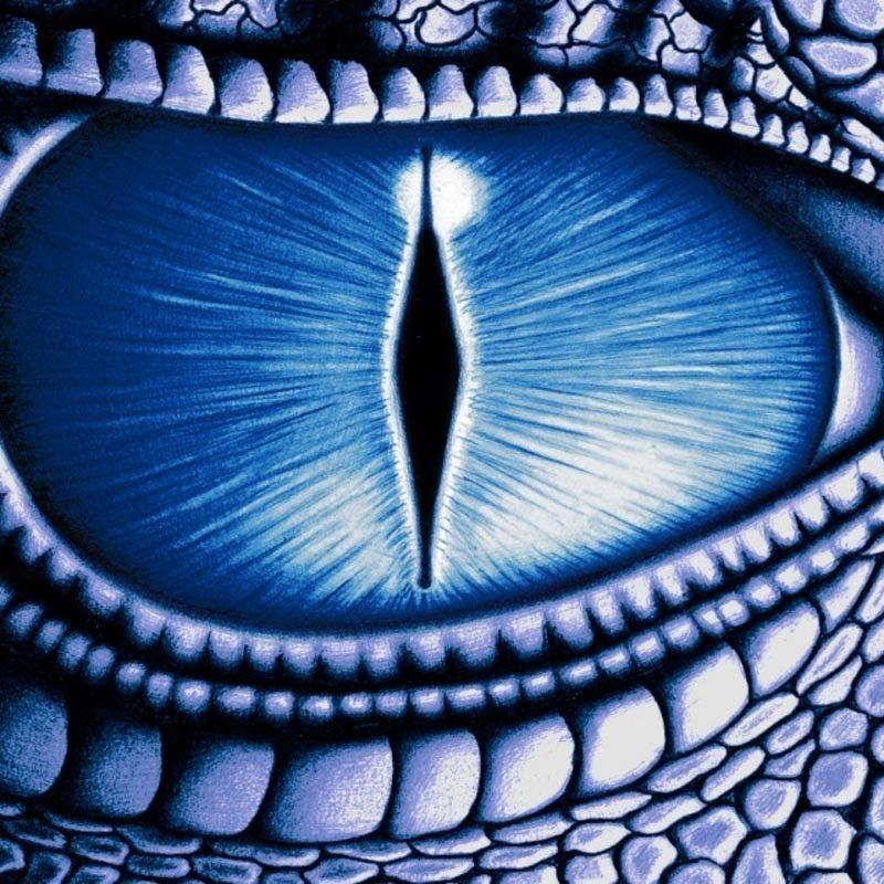 10 Latest Pictures Of Dragon Eyes FULL HD 1920×1080 For PC Background 2018 free download extremely powerful biokinesis get blue dragon eyes subliminal 800x800
