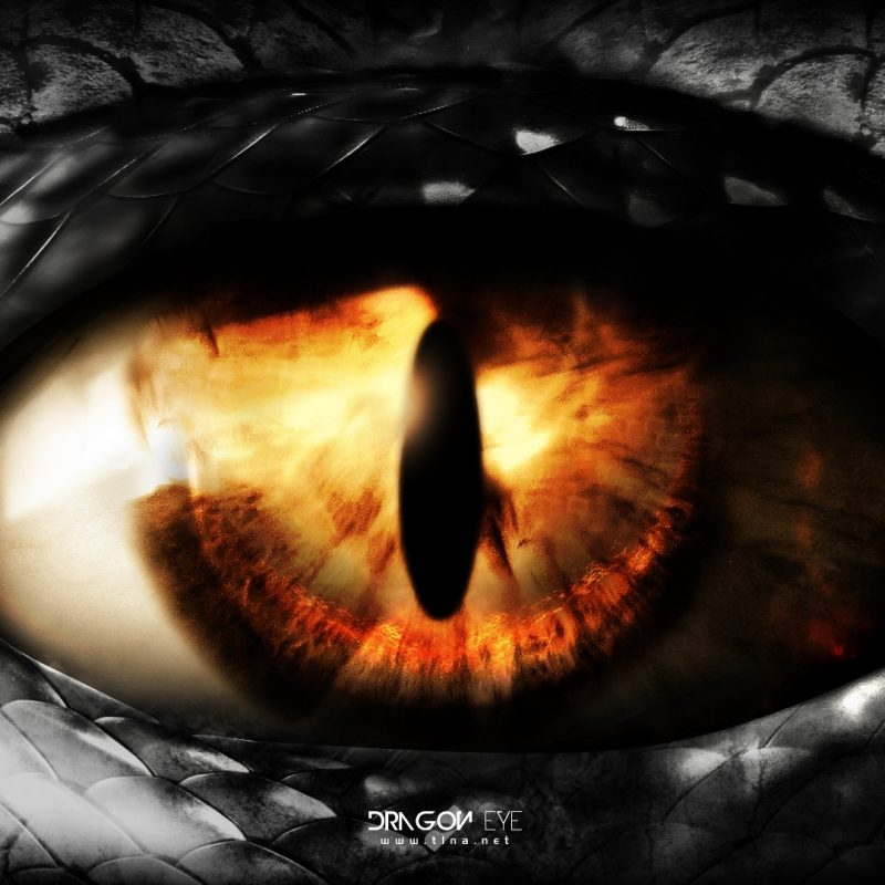 10 Latest Pictures Of Dragon Eyes FULL HD 1920×1080 For PC Background 2018 free download eyet1na on deviantart 800x800