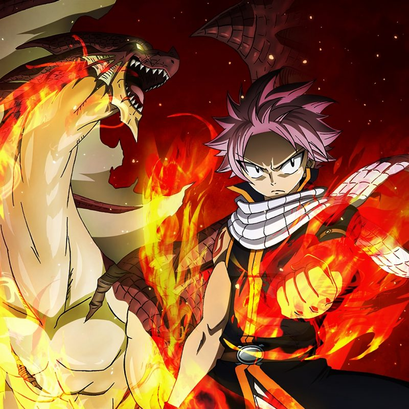 10 Latest Fairy Tail Wallpaper Natsu FULL HD 1080p For PC Desktop 2018 free download fairy tail full hd fond decran and arriere plan 1920x1080 id803894 800x800