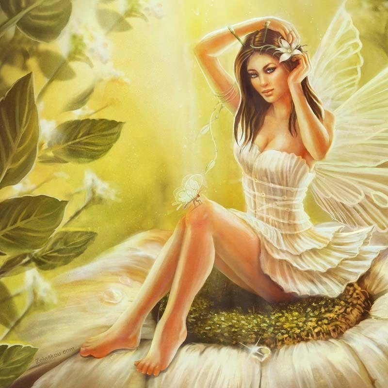 10 New Free Fairies Wallpapers Download FULL HD 1080p For PC Background 2018 free download fairy wallpaper apk download free personalization app for android 800x800