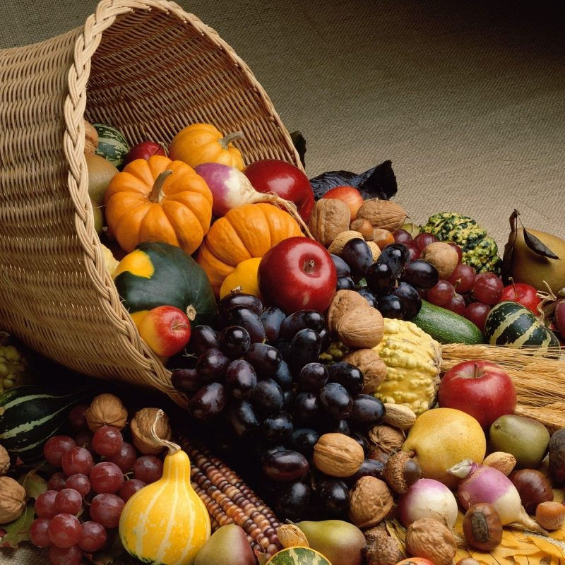 10 Most Popular Fall Harvest Wallpaper Backgrounds FULL HD 1920×1080 For PC Background 2018 free download fall harvest hd background wallpapers 3797 amazing wallpaperz 800x800